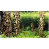 poster-hobby-double-face-scaper-s-forest