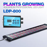 Rampe LED eau douce LDP-800 - Bao Aquarium