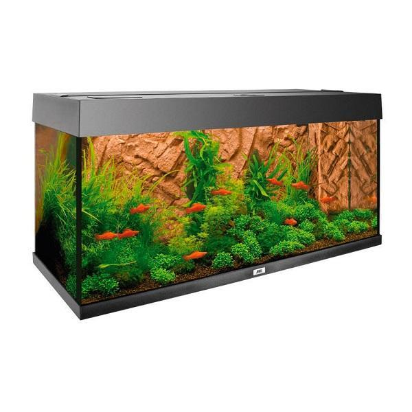 stone-clay-decoration-de-fond-aquarium-juwel