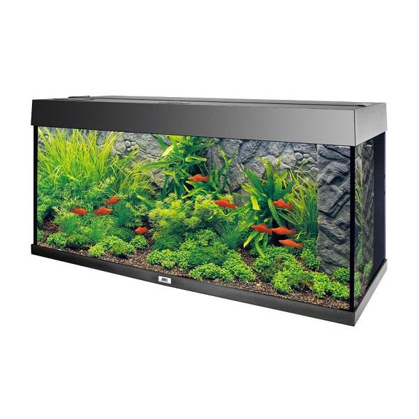 stone-granite-decoration-de-fond-aquarium-juwel