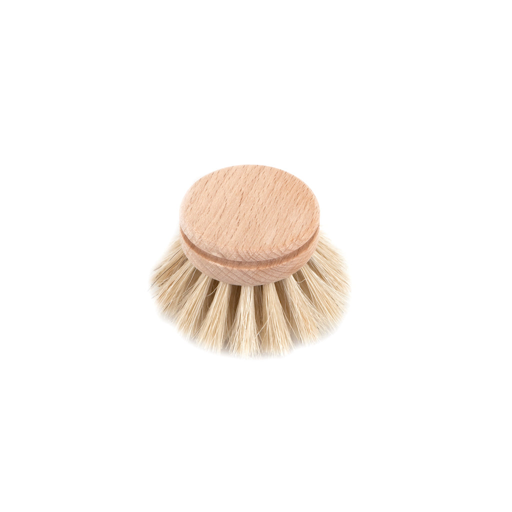 Natural Dish Brush Replacement Head