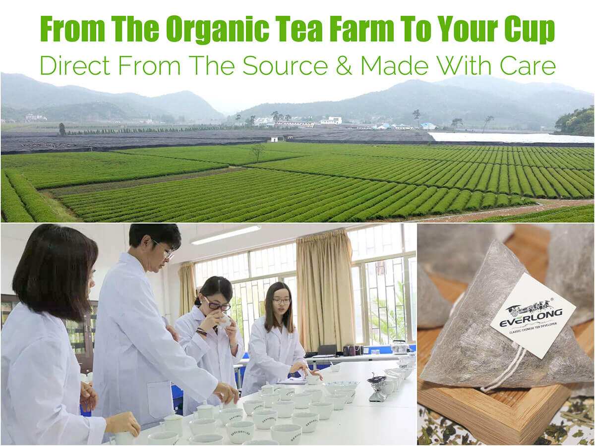 From the organic tea farm to your cup