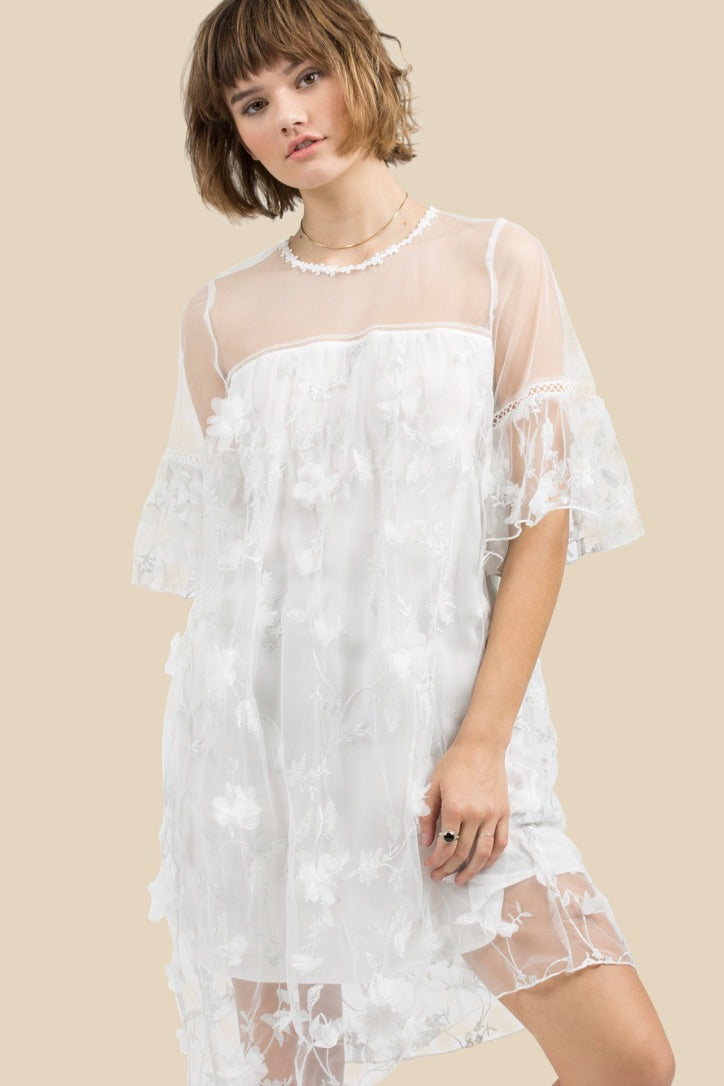 Sale! Annabelle Lace Embroidery Sheer Dress - Sswing Lifestyle Company