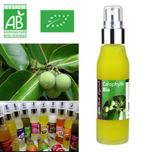 Load image into Gallery viewer, Calophyllum - Organic Virgin Cold Pressed Oil 50ml