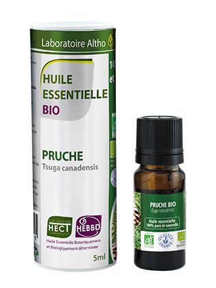 Buy canadian hemlock essential oil online in Ireland. 100% pure organic essential oil for sale in Ireland. Certified organic canadian hemlock essential oil. Irish compamy. 5 star reviews