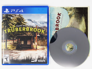 Truberbrook (Playstation 4 / PS4)