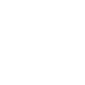 hammerdowncycling
