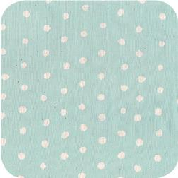 Nani Iro Pocho White On Minty Blue