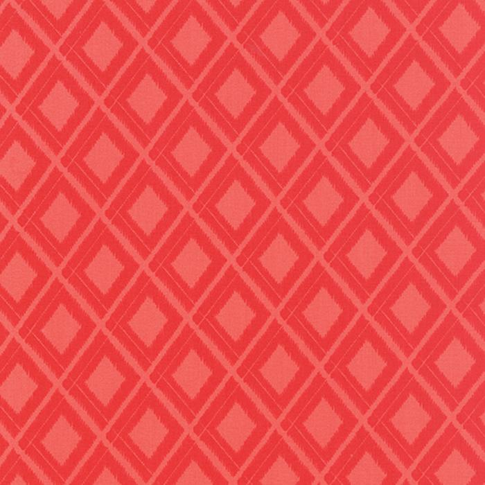 Simply Colorful Ikat Red