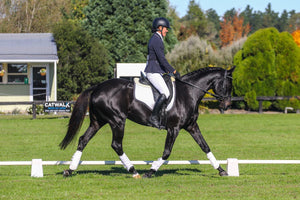 anna-poole-sponsored-rider-excel-equine