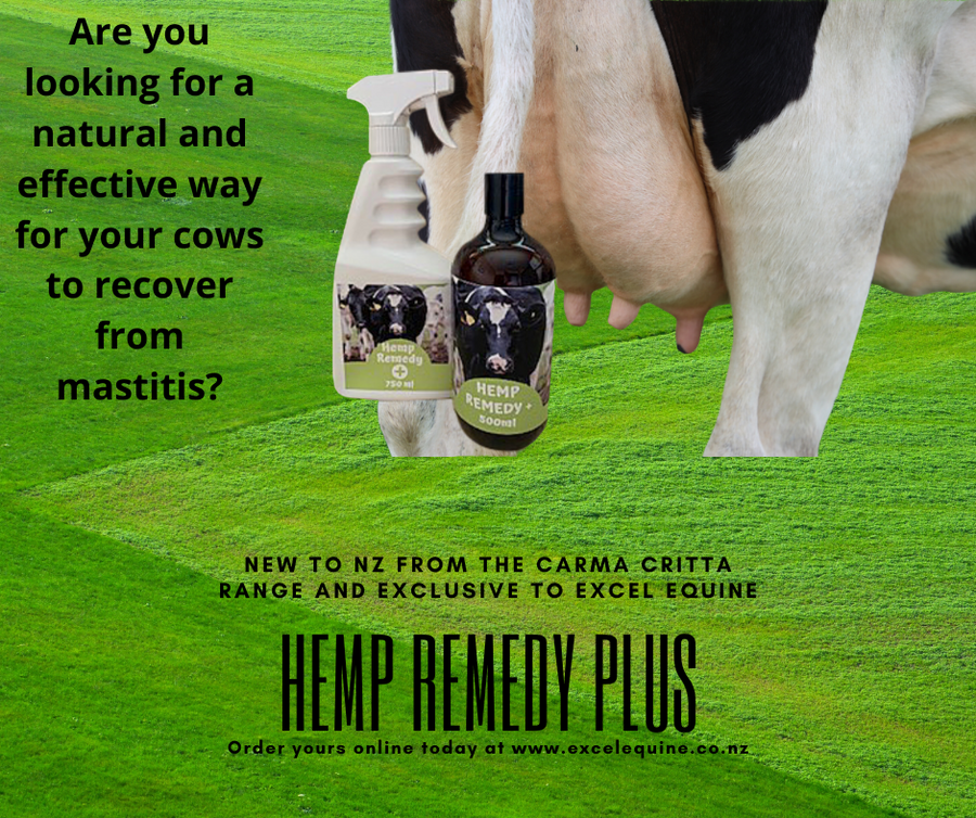 Hemp Remedy Plus