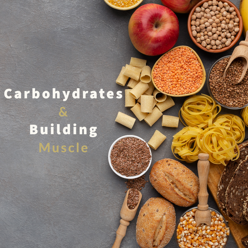 The Importance of Carbohydrates In Muscle Building