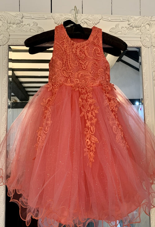 Sparkly Tulle and Lace Flower Girl Dress
