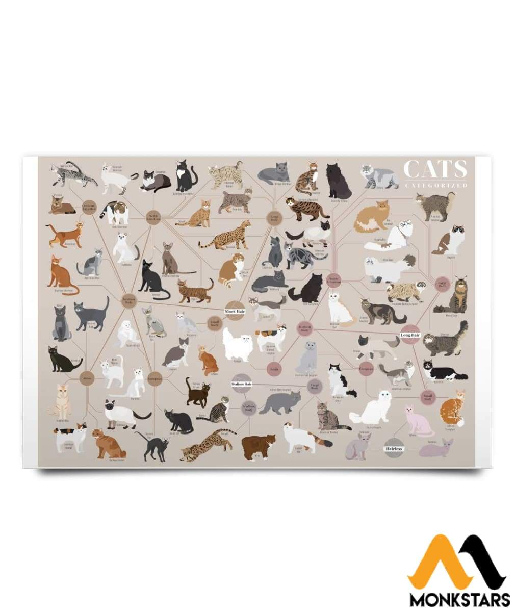 All Breeds Of Cats Poster 24X16