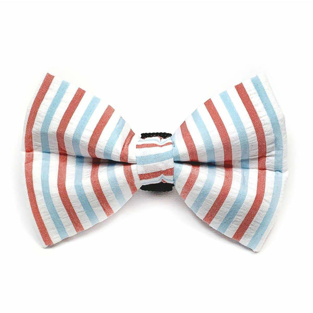 Winthrop Clothing Co. -  Red and Blue Seersucker Dog Bow Tie