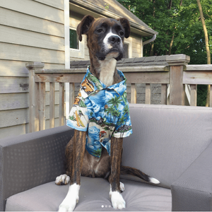 Dog Threads - Longboard BBQ Shirt