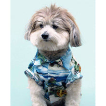 Load image into Gallery viewer, Dog Threads - Longboard BBQ Shirt dog