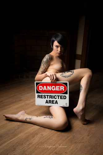 The Sign Series, Danger Restricted Area