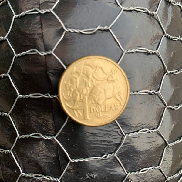 Chicken Wire (or Aviary Mesh) - 12.5mm Opening x 1200mm High x 30 Metre Roll. Australia