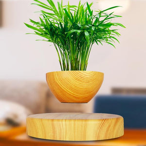 Magnetic Levitating Pot For Air Bonsais & Small Plants-Bangcool