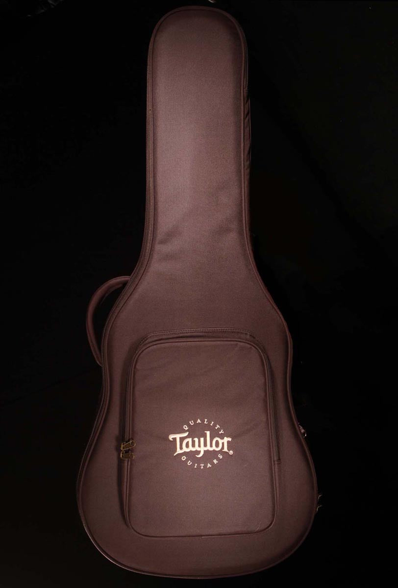 Taylor 210ce Plus Dreadnought w/Aerocase