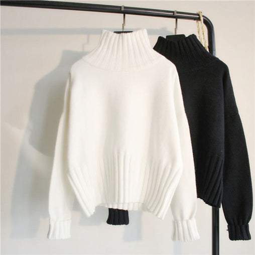 Basic Knitted Ribbed Slim Turtleneck