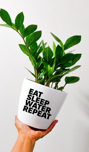 Eat. Sleep. Water. Repeat