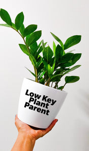 Low Key Plant Parent