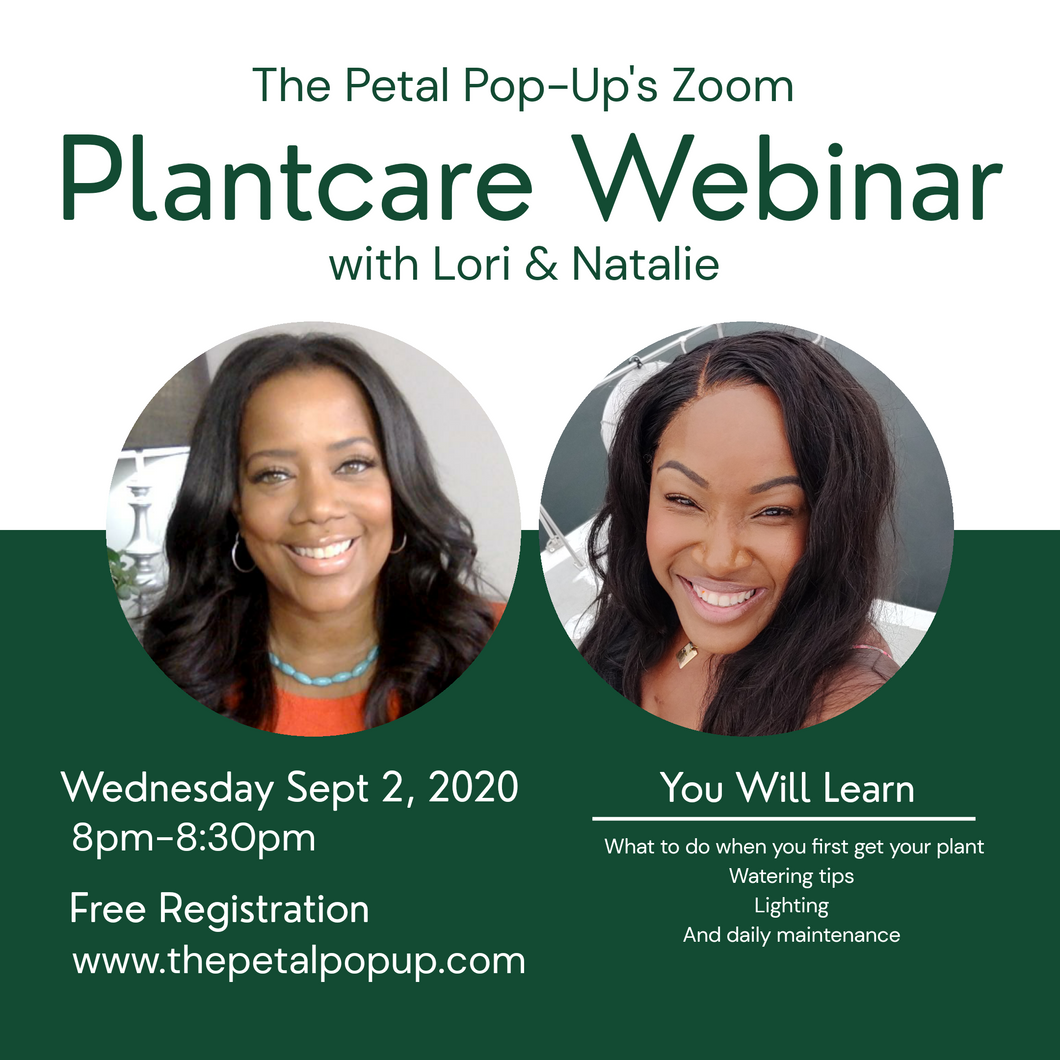 The Petal Pop- Up's Plant Care Webinar on Zoom