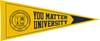 You Matter University 4 Pack Pennant - Navy/Yellow