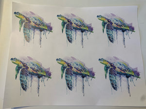 Sea Turtle Waterslide Sheet