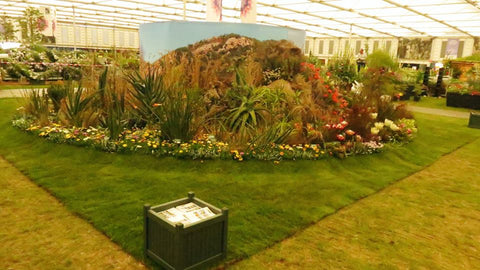 Chelsey Flower Show Display 2017