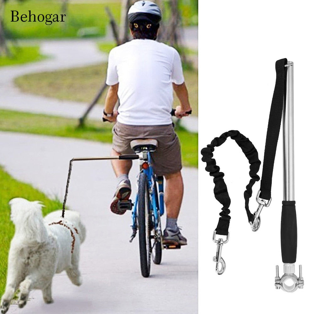 dog bicycle leash