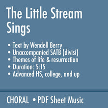 Load image into Gallery viewer, The Little Stream Sings