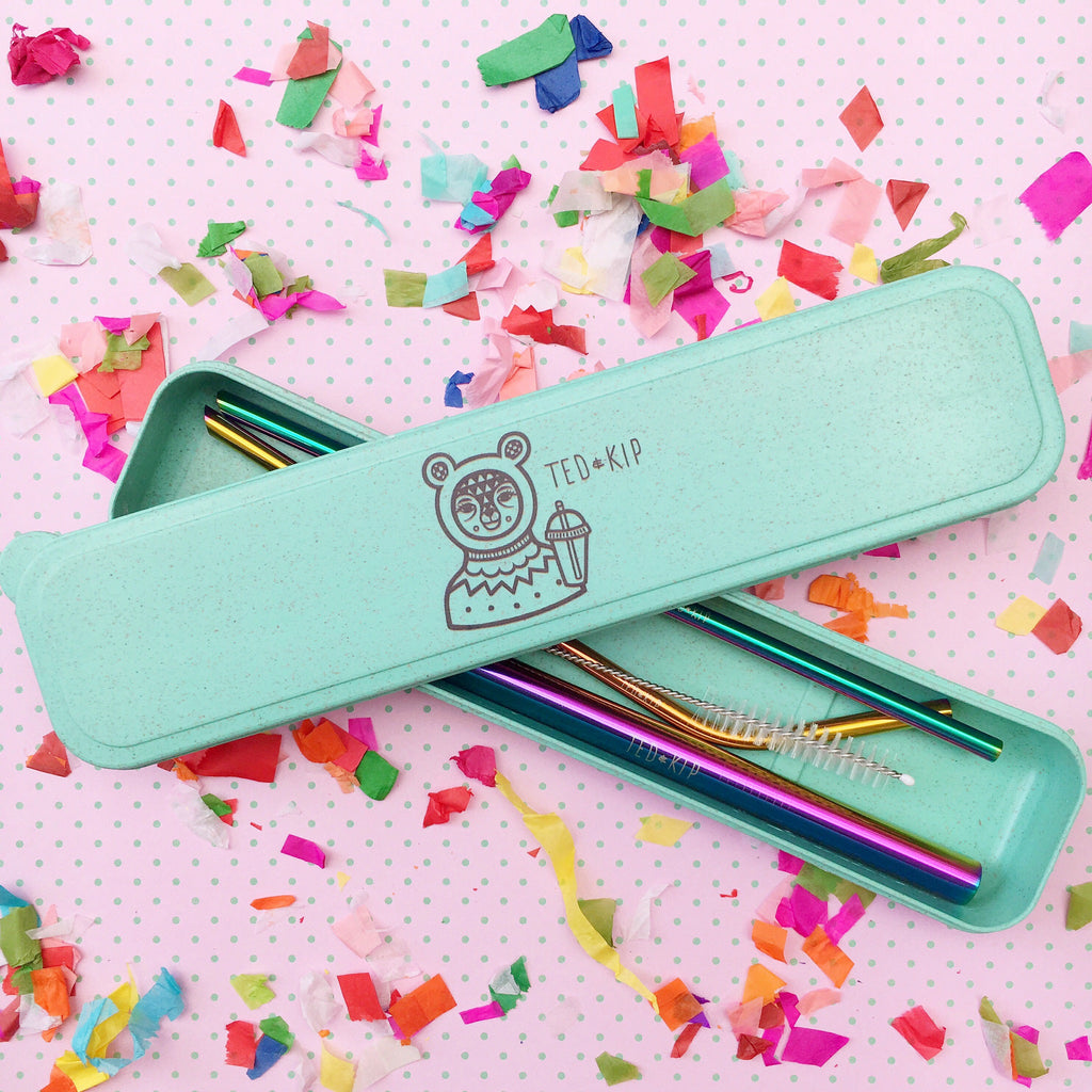 Rainbow Metal Straw Set With Mint Green Eco Wheat Plastic Carry Case