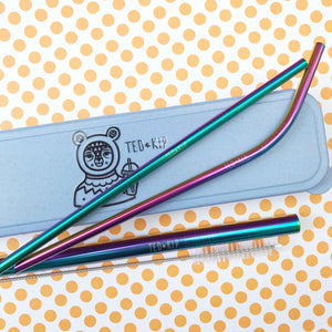 Rainbow Metal Straw Set With Blue Eco Wheat Plastic Carry Case