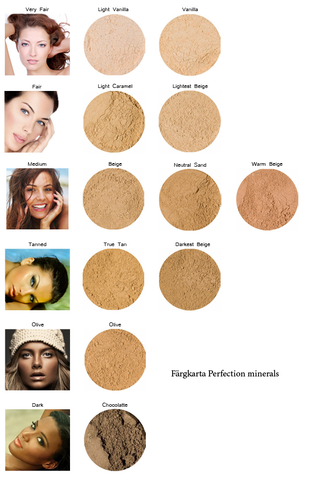 ECO Minerals Refill Perfection Foundation (Vegan) Brun utan sol