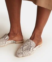HALEE FLATS IN STONE SNAKE PRINT LEATHER -   Dolce Vita