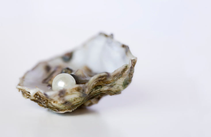 Could Crushed Pearl Powder help to Save Your Skin? This Ancient ingredient is just now getting the scientific recognition it deserves.