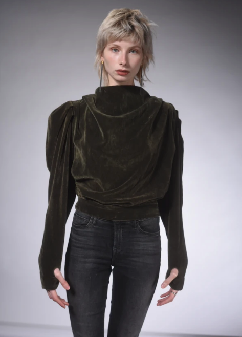 Sirvansa Bronze Velvet Top