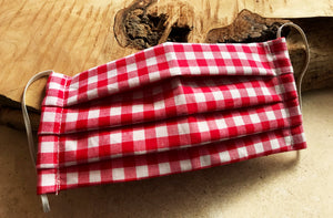 Red Gingham Reusable Face Mask