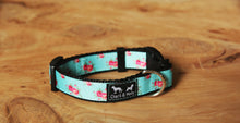 Load image into Gallery viewer, Aqua Roses Dog Collar