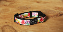 Load image into Gallery viewer, Floriade Dog Collar