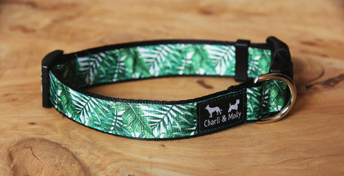 Palm Leaves Dog Collar