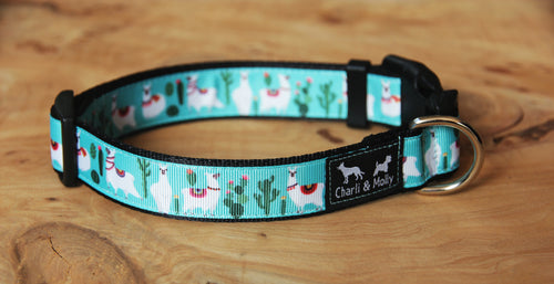 Hefner The Llama Dog Collar