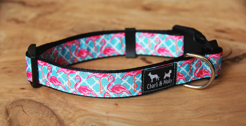 Florida Dog Collar