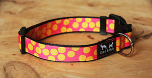 Dots of Mystery Dog Collar