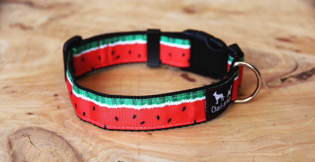Red Watermelon Dog Collar