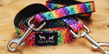 Load image into Gallery viewer, Rainbow Drops Dog Lead