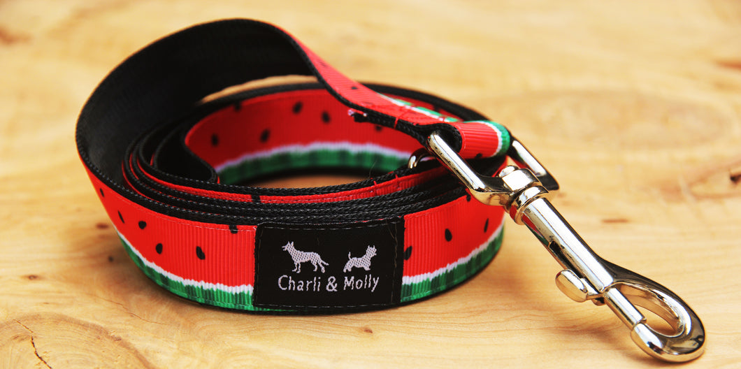 Red Watermelon Dog Lead